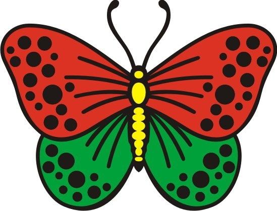 фото картинки рисунки бабочки